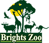 Brights Zoo Logo