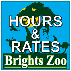 Hours&Rates