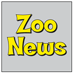 Zoo News Tile